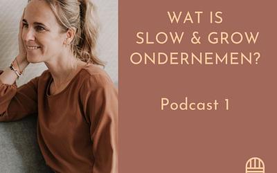#1 Wat is Slow & Grow ondernemen?